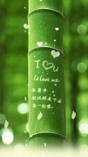 I Love You Bamboo iPhone 8 wallpaper