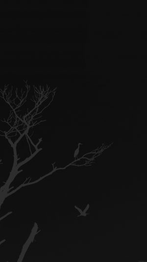 Bird Sunset Tree Dark Nature Minimal iPhone 8 wallpaper