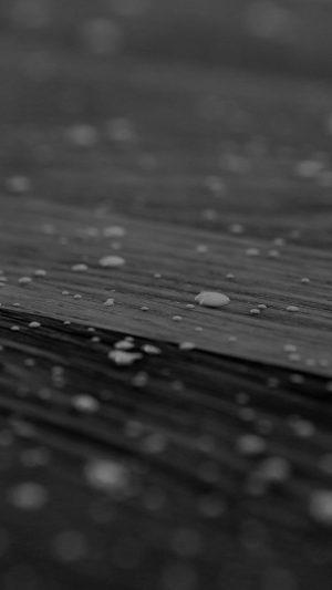 Drops Of Milk On Floor Pattern Nature Dark Bw iPhone 8 wallpaper