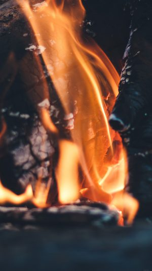 Fire Camp Thomas Lefebvre Nature iPhone 8 wallpaper