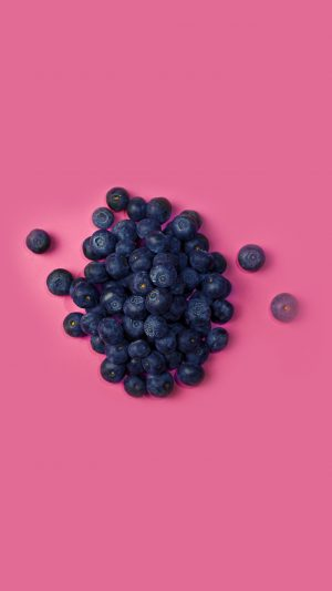 Food Blueberry Pink Art Nature iPhone 8 wallpaper