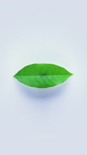 Green Leaf Minimal Nature Art iPhone 8 wallpaper