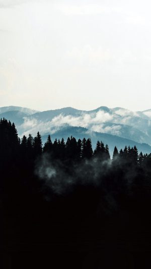 Mountain Fog Nature View Wood Forest Dark iPhone 8 wallpaper