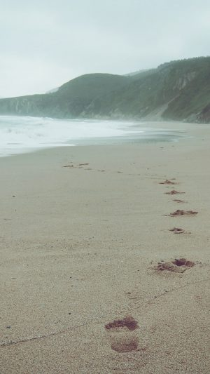 Naked Walk Sea Beach Nature Pure iPhone 8 wallpaper