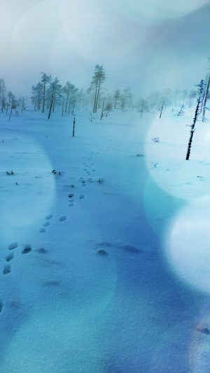 Snow Walk Winter Blue Bokeh Footprints Nature Mountain iPhone 8 wallpaper