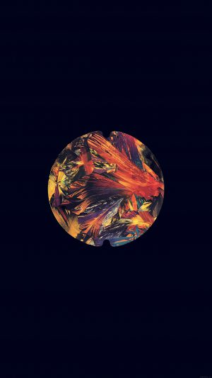 Tycho Music Art Cover Dark Ghostly iPhone 8 wallpaper