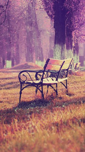 Wallpaper Fall Blue Park Chair Lonely Nature iPhone 8 wallpaper