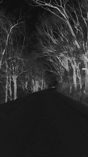 Winter Scary Road Nature Mountain Dark iPhone 8 wallpaper