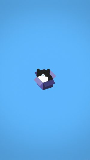 Cat Box Blue Illust Animal Art Minimal iPhone 8 wallpaper