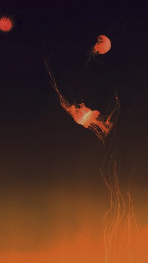 Jellyfish Sea Animal Orange By Lance Anderson Nature iPhone 8 wallpaper