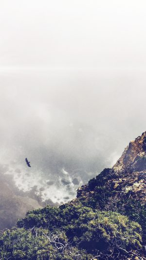 Mountain Bird Cliff Animal Fog Cloud Flare iPhone 8 wallpaper